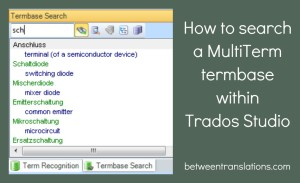 How to search a MultiTerm termbase within Trados Studio