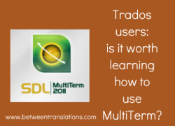 Translating with SDL Trados Studio: should you learn how to use MultiTerm?