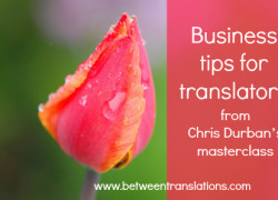 Business tips for translators from Chris Durban's masterclass