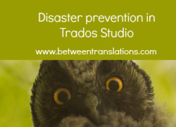 Disaster prevention in Trados Studio – making sure you can save the target file