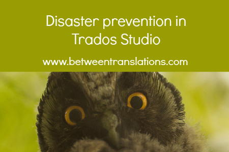 Disaster prevention in Trados Studio