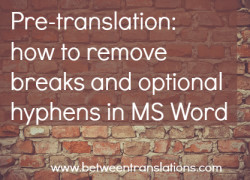 Pre-translation: how to remove breaks and optional hyphens in MS Word