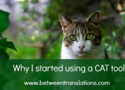 Taking the leap: why I started using a CAT tool