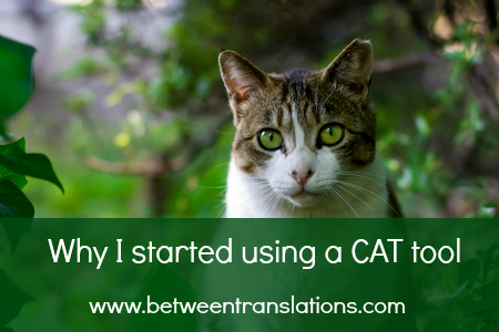 Translation tools: why I started using a CAT tool