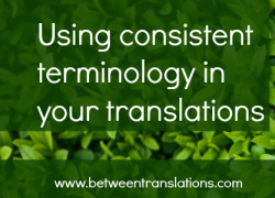 Translating manuals into English – using consistent terminology