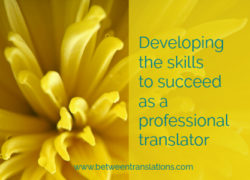 Developing the skills to succeed as a professional translator